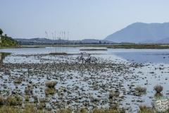 Fahrrad im Moor