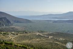 Blick über ein Meer von Olivenhainen
