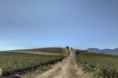 steile Feldwege