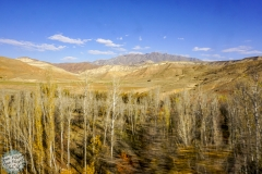 Während der Zugfahrt rauscht die Landschaft vorbei